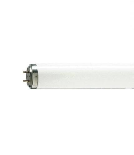 TL 20W/12 RS UV-B - 928010001201 - 8711500628831