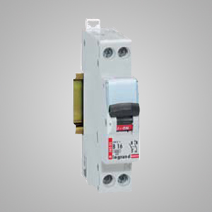 Disjunctor Faza+Nul 10A, Curba C - 3245060064099