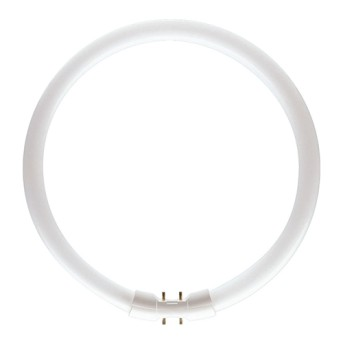 Tub fluorescent Philips TL5 Circular 60W/830 2GX13 - 927966083013 - 8711500642592