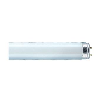 Tub fluorescent Ledvance L 36W/77 Fluora LDV - 4050300003184
