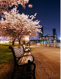 iluminat arhitectural - poduri - parcuri