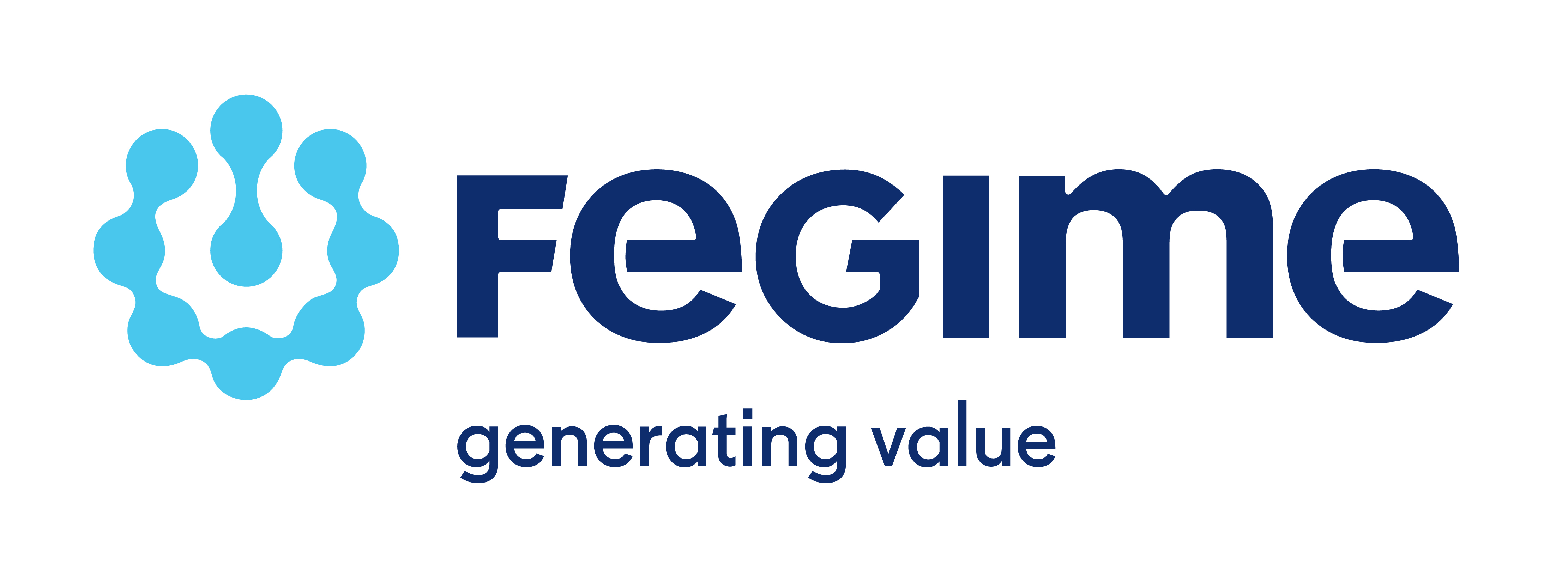 FEGIME - generating value